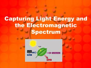 Capturing Light Energy and the Electromagnetic Spectrum