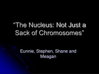 """The Nucleus: Not Just a Sack of Chromosomes"""