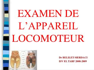 EXAMEN DE       L�APPAREIL LOCOMOTEUR