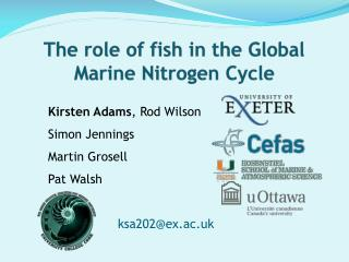 The role of fish in the Global Marine Nitrogen Cycle