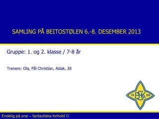 SAMLING PÅ BEITOSTØLEN 6.-8. DESEMBER 2013