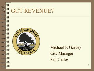 GOT REVENUE?