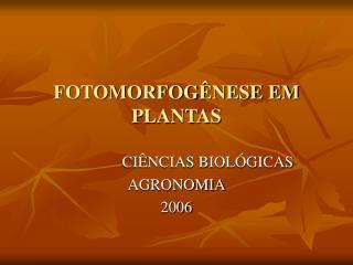 FOTOMORFOGÊNESE EM  PLANTAS