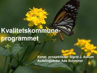 Kvalitetskommune- programmet