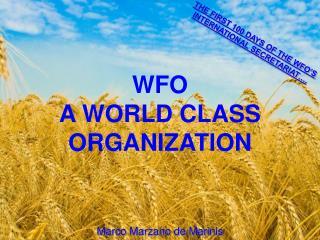 WFO  A WORLD CLASS ORGANIZATION