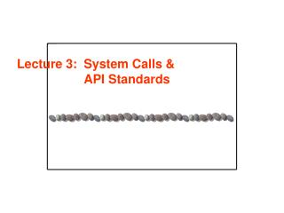 Lecture 3: 	System Calls & API Standards