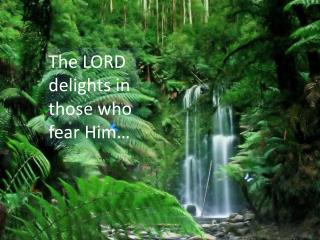 The LORD  delights in  those who fear Him�