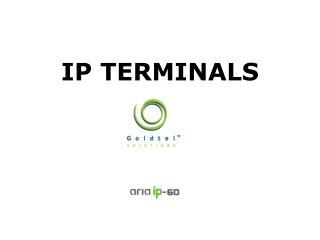 IP TERMINALS