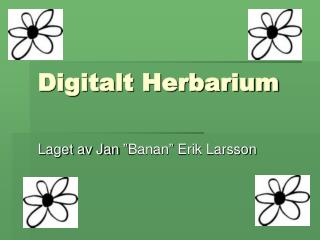 Digitalt Herbarium