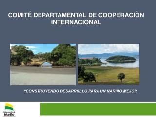 COMITÉ DEPARTAMENTAL DE COOPERACIÒN INTERNACIONAL