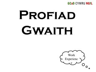 Profiad Gwaith