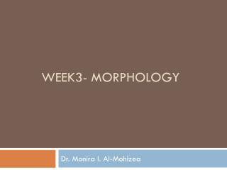 Week3- Morphology