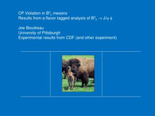 CP Violation in B 0 s  mesons Results from a flavor tagged analysis of B 0 s   J/ y f