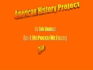 American History Project