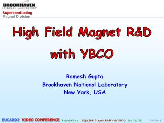 High Field Magnet R&D with YBCO