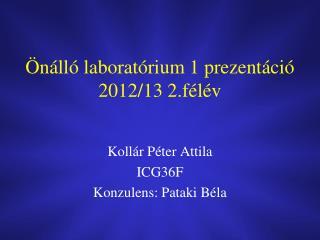 Önálló laboratórium 1 prezentáció 2012/13 2.félév