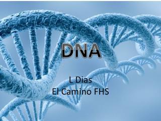 L Dias El Camino FHS
