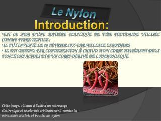 est  le nom d'une matière plastique de type polyamide utilisée comme fibre textile;