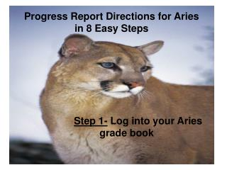 Progress Report Directions for Aries in 8 Easy Steps
