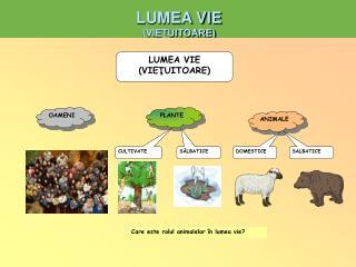 LUMEA VIE (VIE?UITOARE)
