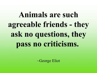 Animals are such agreeable friends - they ask no questions, they pass no criticisms. ~George Eliot