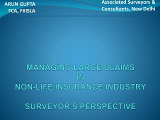 MANAGING LARGE CLAIMS  IN  NON-LIFE INSURANCE INDUSTRY  SURVEYOR'S PERSPECTIVE