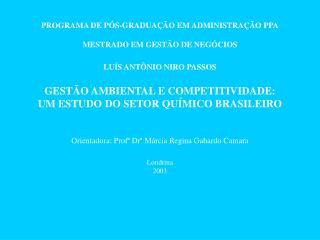 PROGRAMA DE PÓS-GRADUAÇÃO EM ADMINISTRAÇÃO PPA MESTRADO EM GESTÃO DE NEGÓCIOS