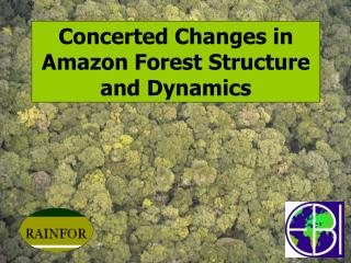 Concerted Changes in Amazon Forest Structure and Dynamics
