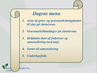 Dagens menu