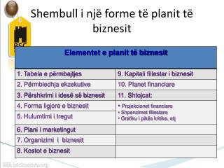 Shembull i një forme të planit të biznesit