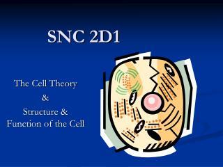 SNC 2D1
