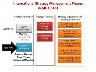 International Strategy Management Phases in MGX 5181