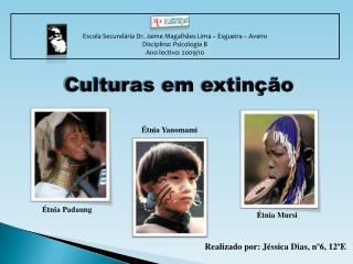 Escola Secund ria Dr. Jaime Magalh es Lima   Esgueira   Aveiro Disciplina: Psicologia B Ano lectivo: 2009
