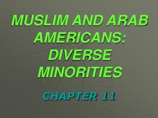 MUSLIM AND ARAB AMERICANS: DIVERSE MINORITIES