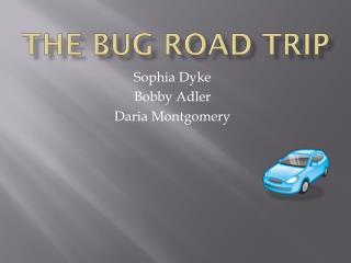 The Bug road trip