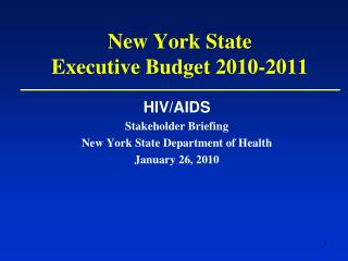 New York State  Executive Budget 2010-2011