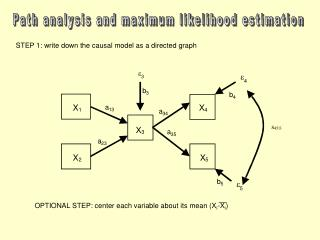 Path analysis and maximum likelihood estimation