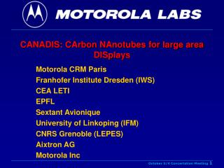 CANADIS: CArbon NAnotubes for large area DISplays
