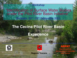 The Cecina Pilot River Basin Experience