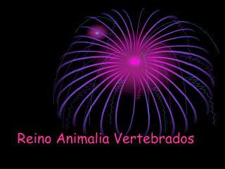 Reino Animalia Vertebrados