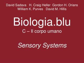 How do sensory cells convert stimuli into action potentials?