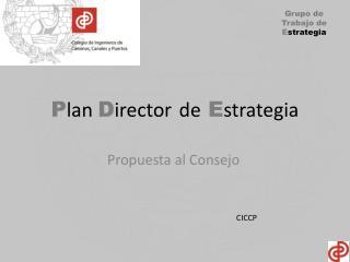 P lan  D irector de E strategia