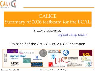 CALICE Summary of 2006 testbeam for the ECAL