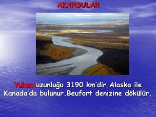 AKARSULAR Yukon: uzunluğu 3190 km'dir.Alaska ile Kanada'da bulunur.Beufort denizine dökülür.