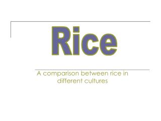 A comparison between rice in different cultures