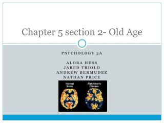 Chapter 5 section 2- Old Age