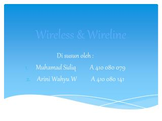 Wireless & Wireline