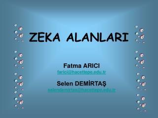 ZEKA ALANLARI