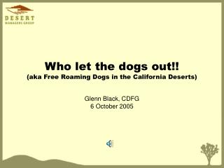 Who let the dogs out!! (aka Free Roaming Dogs in the California Deserts)