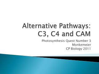 Alternative Pathways:  C3, C4 and CAM